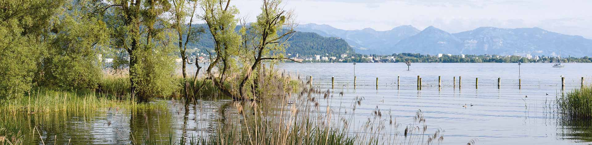 Leiblach Uferlandschaft © UMG
